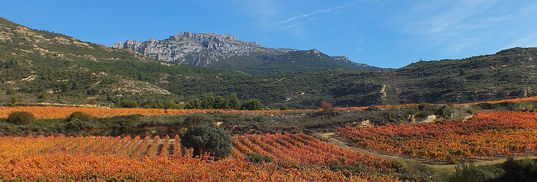 Experiencias de turismo en Rioja Alavesa